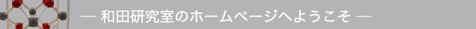 和田研究室のホームページへようこそ